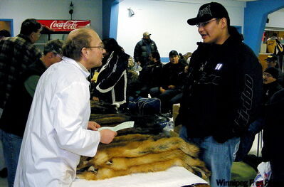 A buyer (left foreground) and a trapper discuss the trapper's fur lot as they participate in the Thompson Fur Table, being held this weekend.