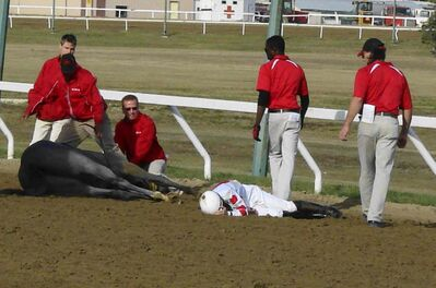 Leading jockey Paul Nolan and his mount Smoke Show went down after clicking heels with Regal Silver in the Buffalo Stakes on Sunday. Both got up and are OK.