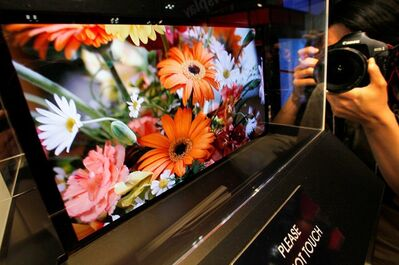 In this April 15, 2009 file photo, a photographer takes a photo of a clear image of flowers on a Sony Corp.'s 21-inch OLED, or organic light-emitting diode, display model shown for the first time in Japan at the 5th International Flat Panel Display Expo 'Display 2009' in Tokyo. Long-time Japanese rivals Sony and Panasonic Corp. are working together to develop next-generation TV panels called OLEDs in a reversal of decades of rivalry as they try to catch up with South Korea's Samsung Electronics. The companies said in a joint statement Monday, June 25, 2012, they will share core technologies to develop OLED panels. They are aiming for low-cost mass production by 2013. (AP Photo/Itsuo Inouye, File)