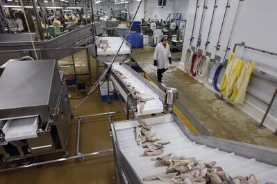 The Freshwater Fish Marketing Corporation can operate most efficiently with fish of the same species and size, but those requirements hamper the development of markets for other species.