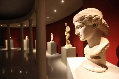 """Head in the style of """"Hera Farnese"""" at the Olympus exhibit at the Winnipeg Art Gallery."""