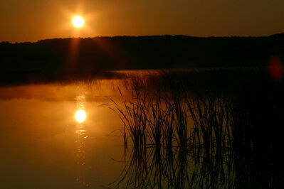 The sun rises over Pelican Lake. Algae advisory signs are now posted on the lake.