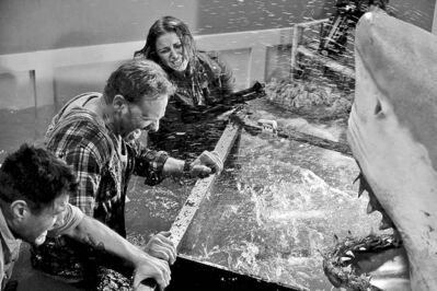 Sharknado not only illustrated the dangers of combining tropical storms and aquatic carnivores (left), it also provided vital information as the whereabouts of B-grade actors such as Ian Ziering (above, centre) and Cassie Scerbo (above, right). SHARKNADO -- �Syfy Original Movie� -- Pictured: (l-r) Ian Ziering as Fin, Cassie Scerbo as Nova