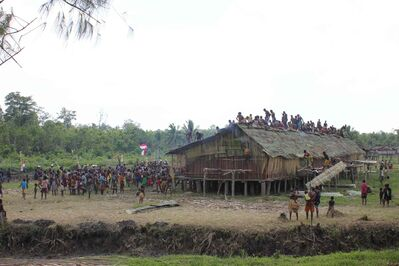 Villagers from the Asmat villages of Pirien and Jisar work at finishing a roof.