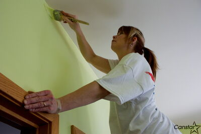 A volunteer finishes painting the sun room at the L'Arche Dayspring residence at 525 Day St. on April 13 as part of Dulux Paint's Adding Colour to People's Lives initiative.