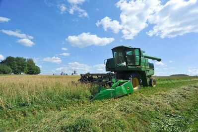 A combine cuts a swath through a wheat field.