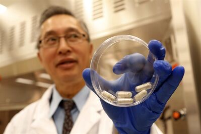 Dr. Thomas Louie, an infectious disease specialist at the University of Calgary, in his lab with stool pills in Calgary, Thursday, Sept. 26, 2013.THE CANADIAN PRESS/Jeff McIntosh