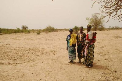'The hunger is one of the worst sicknesses you can have. If you are hungry, you cannot produce anything,' mother of seven Yapoa Lalé said through a translator, sitting on chalk-coloured, bone-dry soil below the shade of a tree. Pictured: Yapoa Lale (right) with daughter Martine in Tamfanou, Niger.