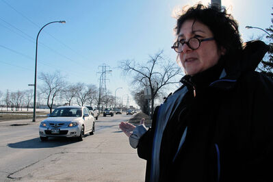 Judy Plotkin, chairperson of the River Height Residents Association, conducted a survey which showed the top three things residents were concerned about was traffic, green space, and giant box stores.