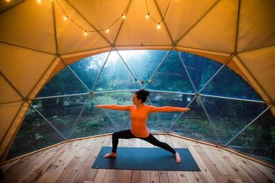 Nectar Yoga B&B owner Andrea Clark poses for a photo while practising yoga in the geodesic dome at her property on Bowen Island, B.C., on Sunday March 26, 2017. The story of Nectar Yoga B&B begins on a hot, crowded train headed to Pondicherry, India. Clark and Satjeet Pandher had taken leaves of absences from their jobs in Vancouver to spend several months travelling in south Asia and Europe in 2013. Clark, a public relations professional, had tired of her corporate life but wasn't sure exactly what to do next. THE CANADIAN PRESS/Darryl Dyck