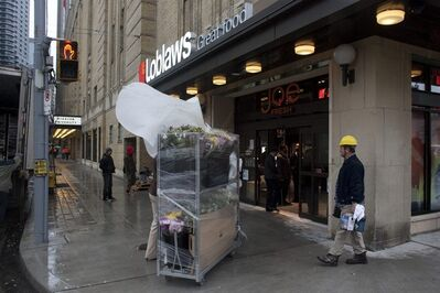 Flowers are brought into a Loblaws store at the site of the old Maple Leaf Gardens in Toronto on Tuesday November 29, 2011. Shelves are being stocked while workmen race to finish the store ahead of Wednesday's opening. THE CANADIAN PRESS/Chris Young