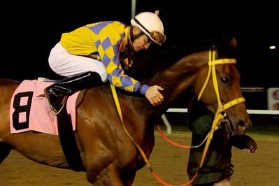 Jockey Paul Nolan on Balooga Bull after winning Gold Cup for a second time.