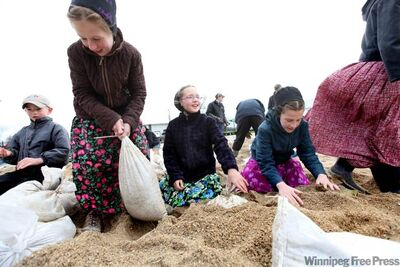 Children on the James Valley Hutterite Colony pitch in Wednesday to help raise dikes in the community, which has escaped major flooding for nearly 100 years.