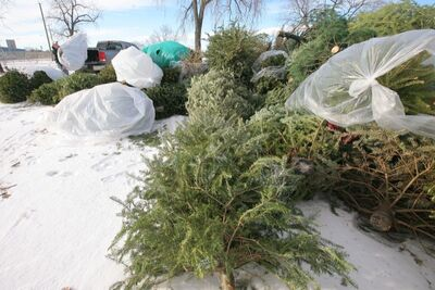 City residents can drop off Christmas trees beginning Dec. 27.