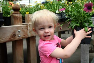 One-year-old Elizabeth Moffatt wasn't waiting for the long weekend to grab a garden plant at the Shelmerdine Garden Centre Friday.
