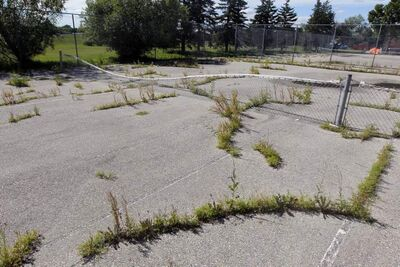Tennis courts in need of repair behind Margaret Grant Pool. The head of the provincial tennis group says maintenance is crucial.