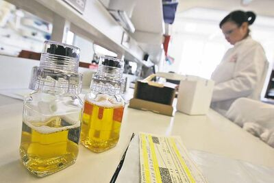 Urine samples are seen as laboratory workers work at the UK's only laboratory to carry out doping tests on sports competitors, in central London's King's College, Thursday July 10, 2008. The Drug Control Centre analyzes over 7,500 samples each year from sportsmen and women for prohibited substances. This year that figures includes around 1,500 tests being conducted on every British athlete heading to Beijing for the Olympic and Paralympic Games. It is one of only 33 laboratories accredited by the World Anti-Doping Agency (WADA) to conduct drug testing in sport. (AP Photo/Lefteris Pitarakis)