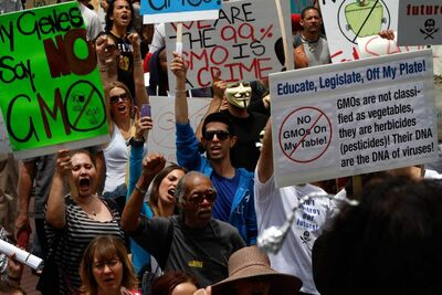 Protesters gather in downtown Los Angeles, Calif. on May 25 as part of a global series of marches against seed giant Monsanto Co. and genetically modified foods.