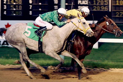 Pleasant Closing wins Wheat City Stakes. Balooga Bull finished fourth.