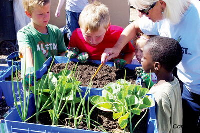 Winnipeg Harvest's Blue Box Gardening program, which teaches kids how they can grow their own food, is one of many ways the organization puts old blue bins to use. Winnipeg Harvest and the CIty of Winnipeg have put out a call for residents to donate their old recycling bins.