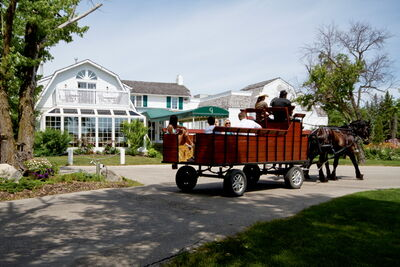 After a delicious brunch at The Gates, go on a relaxing hayride courtesy of Aspire Photography & Carriage Services.