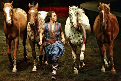 "An actor leading horses in the theatre production of ""Odysseo"" is shown in a handout photo. Making 60 horses and 50 performers move across hills and a lake in various cities, under a tent bigger than an NFL football field and on a stage the size of two hockey rinks, has been a mammoth challenge that still astounds ""Odysseo'"" creator Normand Latourelle. THE CANADIAN PRESS/HO"