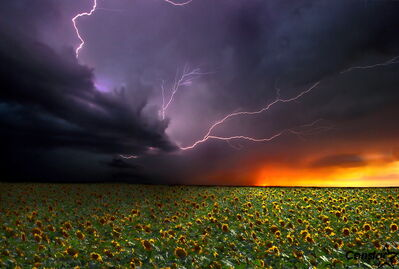 A Tara Miller image portraying a lightning strike.