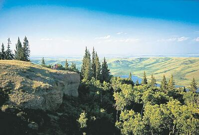 Cypress Hills - a holy place for First Nations people.