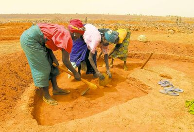 As part of a food-for-work program, women dig 'crescent moons' on a hillside northwest of the town of Madoua.