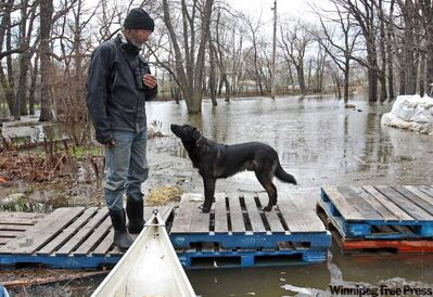 Dave Barnes, with his dog Jack, looks over flooding on his property in Brandon's east end Wednesday.