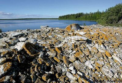Algae-covered rocks line the northwest shore of Lake Winnipeg in this 2004 file photo.