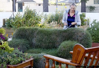 Erica Swendrowski maintains lawn and order.