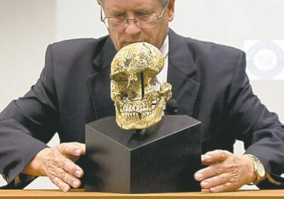 Doug Owsley shows the skull of 'Jane,' which confirms acts of cannibalism in Jamestown, Va. in 1609-1610.