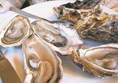 Bivalves aren't just tasty — they're excellent for the environment