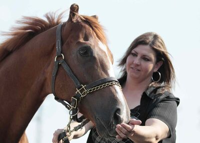 Dixie Mission was born prematurely and later lost his ears due to frostbite but has become a strong contender at Assiniboia Downs for trainer Shelley Brown.