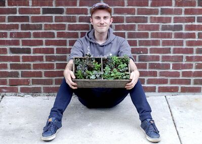 Sue Eggen / The Associated Press</p><p>Plant influencer Nick Pileggi holds a variety of Peperomia outside the houseplant shop Urban Jungle in Philadelphia.</p>