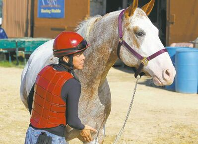 Adolfo Morales recently won six races over three days. He bought this horse named Joey for his wife Paola.