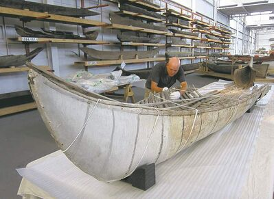 Curator Jeremy Ward examines the canoe, thought to be built in the 1770s or 1780s, at the Canadian Canoe Museum Thursday.