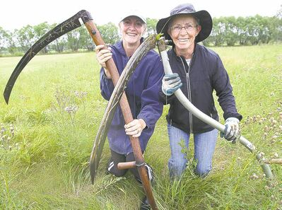 Angela Temple (left), Joanne Noga and many others in the RM of Springfield like to mow the ancient way -- with scythes.