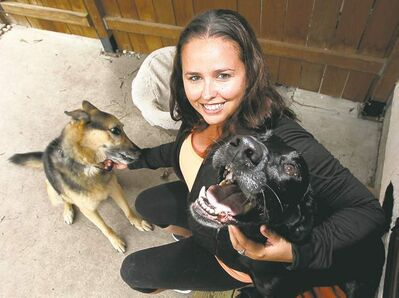 Phil Hossack / Winnipeg Free PressYvonne Russell, with her dogs Mike (left) and Garry, a rescue dog who inspired her to start Paw Tipsters, an animal-abuse reporting line.
