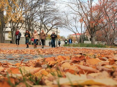 University of Manitoba students attend classes as a normal day Oct. 21, a day ahead of a possible faculty work stoppage.