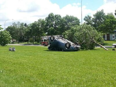 The driver of a speeding car swerved to avoid a collision, knocked over a light standard, hit a tree and rolled his car onto a lawn adjacent to Arthur A. Leach school, witnesses said.