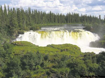 The 13-metre Pisew Falls, on the Grass River south of Thompson, has created its own temperate, misty microclimate.