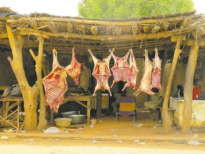 Sheep and goat carcasses hang in a roadside butcher shop along a highway south of the Nigerien capital of Niamey.