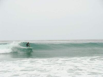 A surfer catches ten at the Ritz-Carlton.