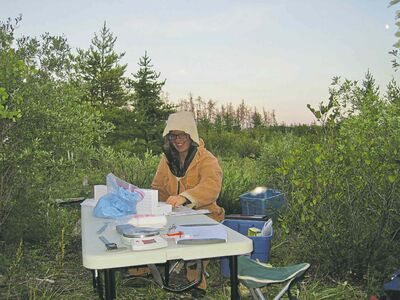 Erin Segstro sets up shop at her workstation, getting ready to catch bats at Abyss cave.