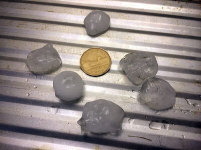 Hail bigger than a loonie is seen in River Heights Friday. Let's hope the weekend brings no such thing.