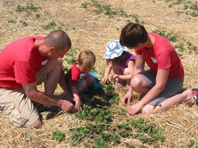 Darren and Angie Cormier, shown here with two of their four children, are  preparing their strawberry fields near La Salle for this year's U-pick season.