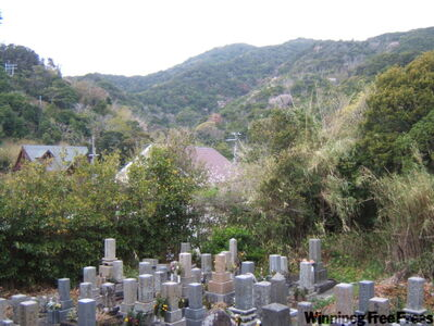 Set against the backdrop of Wakayama 's hills is the cemetery where the author found the graves of his maternal grandparents.