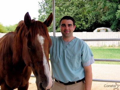 Dr. Chris Bell is looking to make a difference for horses in Manitoba.